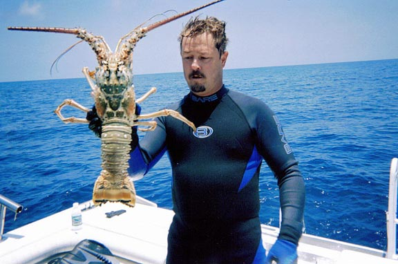 Florida Lobster Pictures